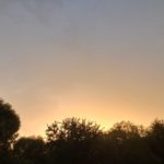 fotografia nasnímaná telefónom SAMSUNG Galaxy A21s