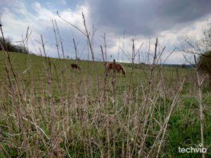 fotografia nasnímaná smartfónom SONY XPERIA 5 II